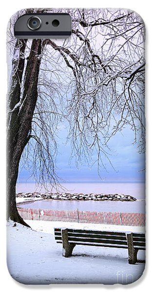 Park Benches iPhone Cases - Winter park in Toronto iPhone Case by Elena Elisseeva