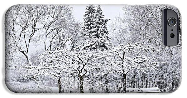 Park Scene iPhone Cases - Winter park landscape iPhone Case by Elena Elisseeva