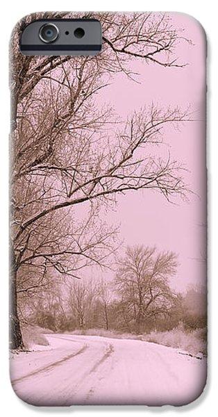 Winter Pink iPhone Case by Carol Groenen