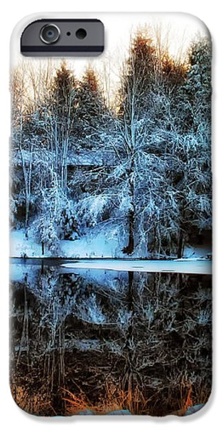 Winter Pond at Shady Grove iPhone Case by Judy Duncan