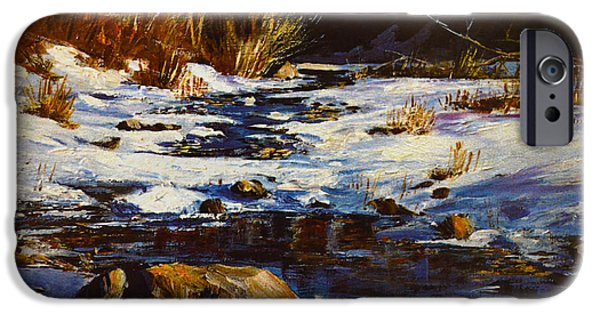 Snow iPhone Cases - Winter Pond iPhone Case by Sandi OReilly