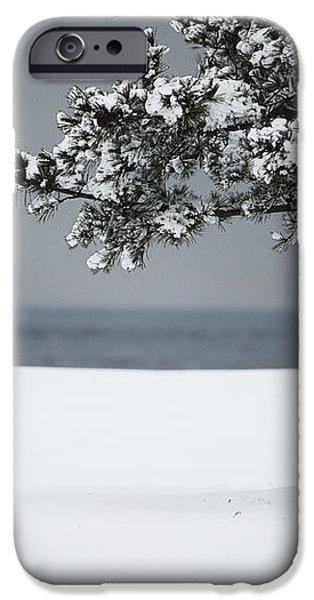 Winter Quiet iPhone Case by Karol  Livote
