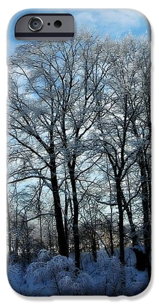Winter Reflections iPhone Case by Dawdy Imagery