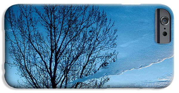 Tree Reflection iPhone Cases - Winter Reflections iPhone Case by Don Spenner