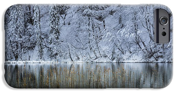 Snow iPhone Cases - Winter Reflections iPhone Case by Evgeny Govorov