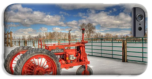 Agriculture iPhone Cases - Winter Repose iPhone Case by Donna Kennedy