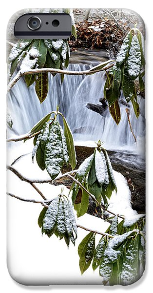 Oak Creek iPhone Cases - Winter Rhododendron and Waterfall iPhone Case by Thomas R Fletcher