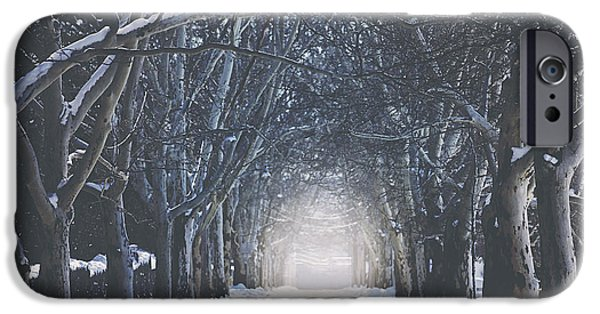 Winter Trees Photographs iPhone Cases - Winter Road iPhone Case by Carrie Ann Grippo-Pike