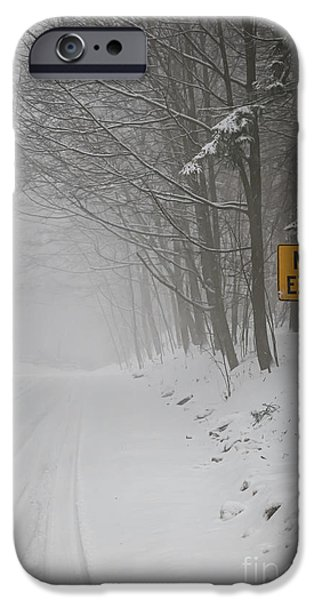 Condition iPhone Cases - Winter road during snowfall I iPhone Case by Elena Elisseeva