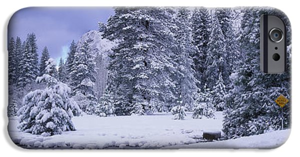 Snowy Day iPhone Cases - Winter Road, Yosemite Park, California iPhone Case by Panoramic Images
