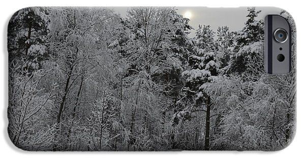Nature Abstract iPhone Cases - Winter Romance 1 iPhone Case by Andre Theophane SITCHET-KANDA