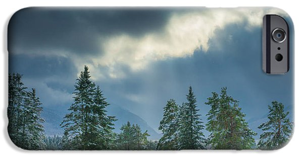 Snow Covered Trees iPhone Cases - Winter Scene - New Hampshire iPhone Case by Joseph Smith