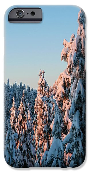 Winter Scenery iPhone Case by Pierre Leclerc Photography