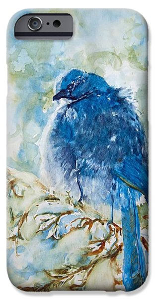 Snow iPhone Cases - Winter Scrub Jay on Juniper iPhone Case by CheyAnne Sexton