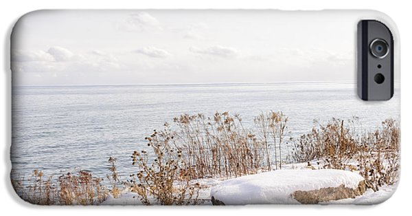 Plants iPhone Cases - Winter shore of lake Ontario iPhone Case by Elena Elisseeva