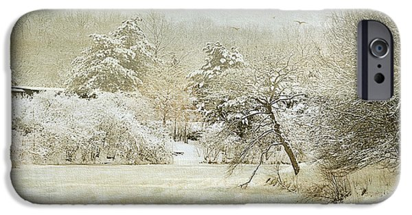 Garden Scene Digital iPhone Cases - Winter Silence iPhone Case by Julie Palencia