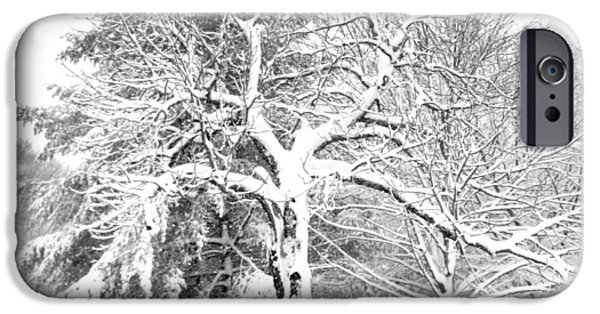 Winter Storm iPhone Cases - Winter Snow Storm iPhone Case by Patricia Sundik