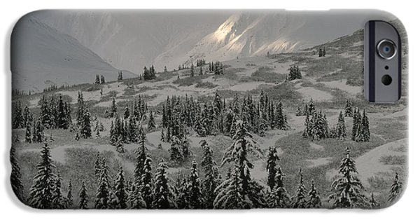 Winter Storm iPhone Cases - Winter Snow Storm iPhone Case by Ron & Nancy Sanford