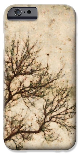 Eerie Mixed Media iPhone Cases - Winter Solitude iPhone Case by Dan Sproul