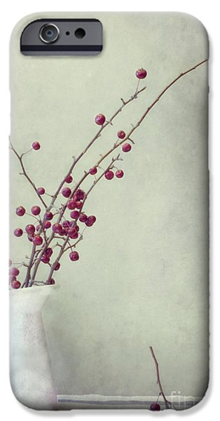 Still Life Photographs iPhone Cases - Winter Still Life iPhone Case by Priska Wettstein