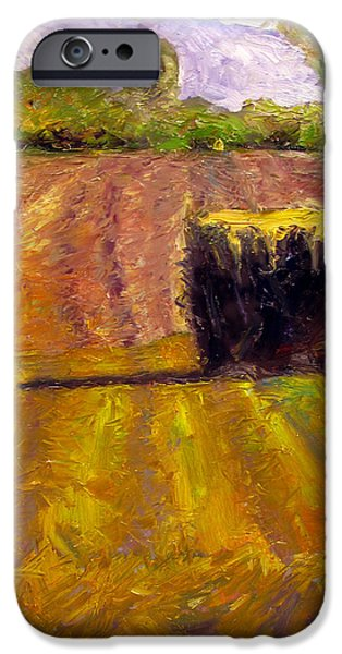 Bales Paintings iPhone Cases - Winter Straw iPhone Case by Charlie Spear