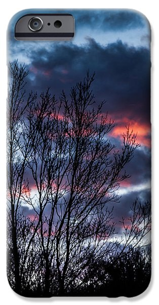 Multimedia iPhone Cases - Winter Sunrise 2 iPhone Case by Frank Mari