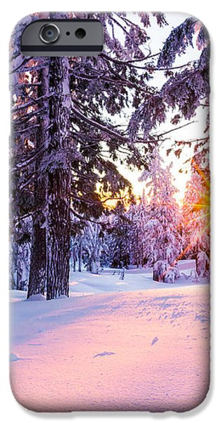Winter Sunset Through Trees iPhone Case by Priya Ghose