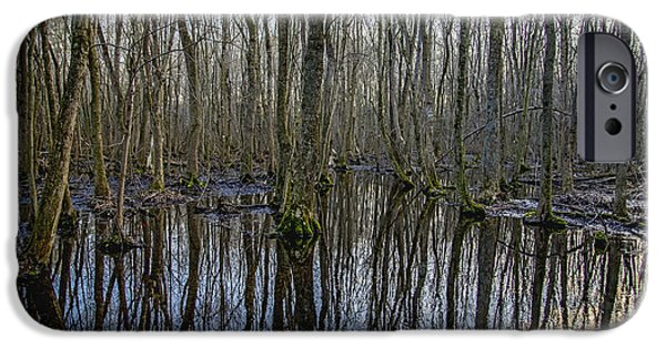 Nature Center Pond iPhone Cases - Winter Swamp iPhone Case by Brian Wallace