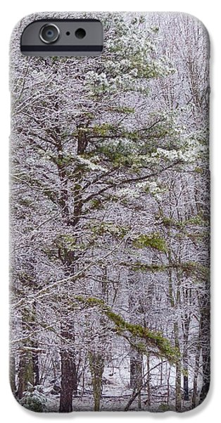 Child Pyrography iPhone Cases - Winter Swing iPhone Case by Teena Bowers