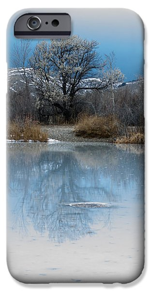 Winter Taking Hold iPhone Case by Fran Riley