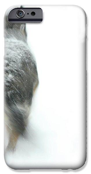 Winter Traveler iPhone Case by Karol  Livote