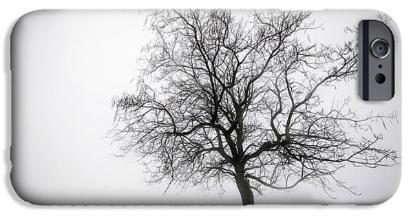 Snow Scene Landscape iPhone Cases - Winter tree in fog iPhone Case by Elena Elisseeva