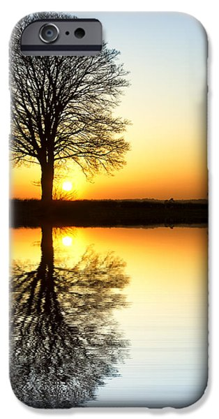 Symmetrical Photographs iPhone Cases - Winter Tree Reflections iPhone Case by Tim Gainey