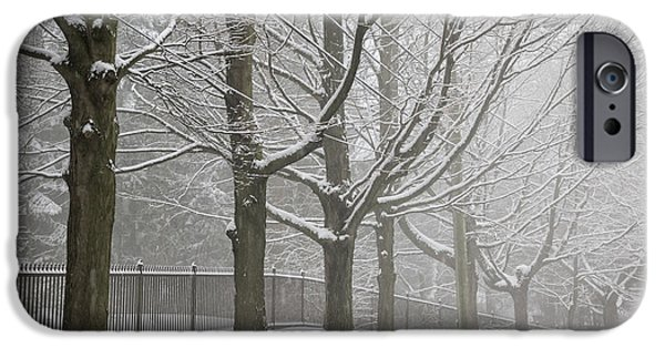Condition iPhone Cases - Winter trees and road iPhone Case by Elena Elisseeva