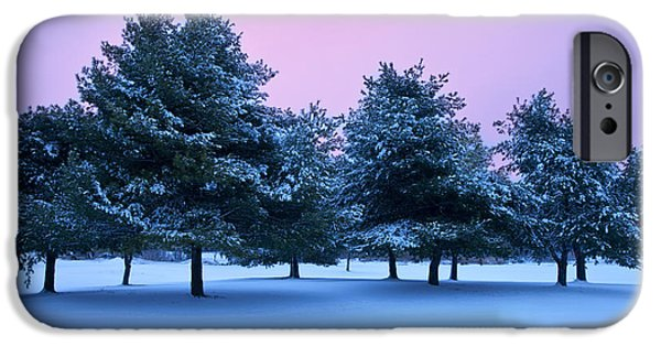 Snowy Night iPhone Cases - Winter Trees iPhone Case by Brian Jannsen