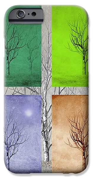 Winter Trees  iPhone Case by David Dehner