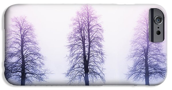 Tree iPhone Cases - Winter trees in fog at sunrise iPhone Case by Elena Elisseeva