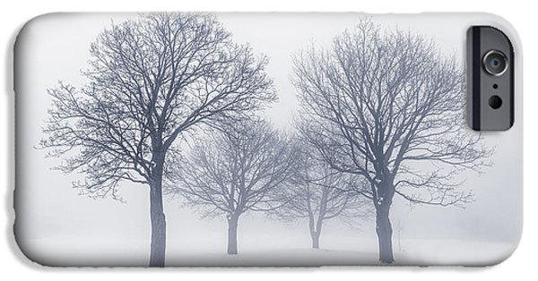 Snow Scene iPhone Cases - Winter trees in fog iPhone Case by Elena Elisseeva