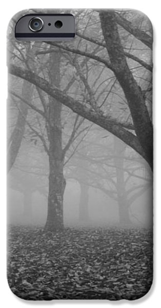 Winter trees in the mist iPhone Case by Nomad Art And  Design