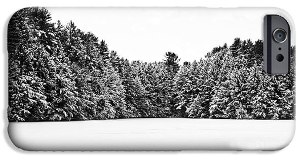 Winter Trees Photographs iPhone Cases - Winter Trees Mink Brook Hanover NH iPhone Case by Edward Fielding