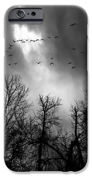 Winter Trees Moving Sky iPhone Case by Bob Orsillo