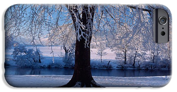 Snowy Day iPhone Cases - Winter Trees Perkshire Scotland iPhone Case by Panoramic Images