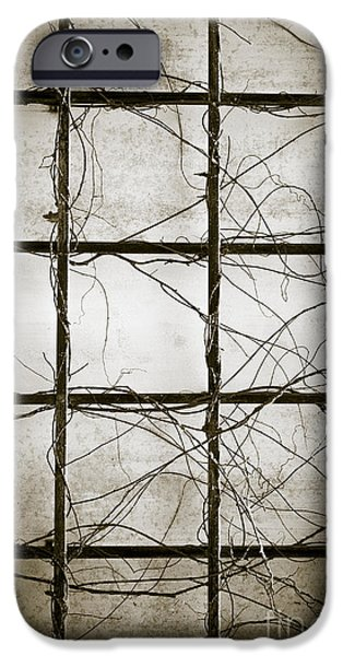 Dirty iPhone Cases - Winter Trellis iPhone Case by Edward Fielding