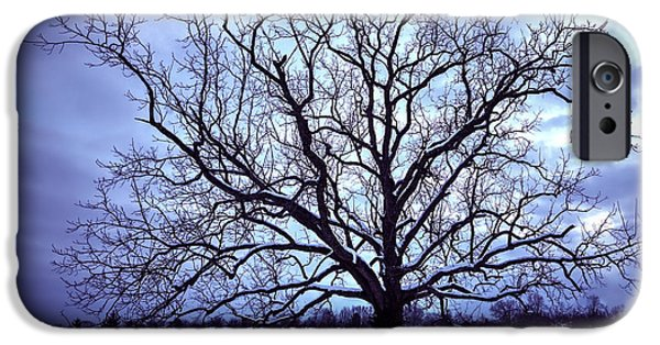 Trees In Snow iPhone Cases - Winter Twilight Tree iPhone Case by Jaki Miller