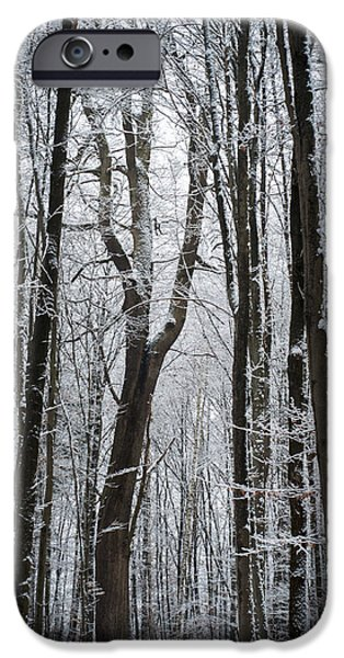 Destiny iPhone Cases - Winter Warmth iPhone Case by Miguel Winterpacht