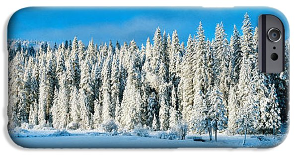 Grey Clouds Photographs iPhone Cases - Winter Wawona Meadow Yosemite National iPhone Case by Panoramic Images