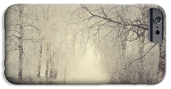 Winter Scene iPhone Cases - Winter Way iPhone Case by Jenny Rainbow