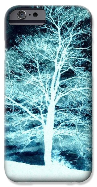 Wintertime iPhone Cases - Winter Whispers through the Night iPhone Case by Janine Riley