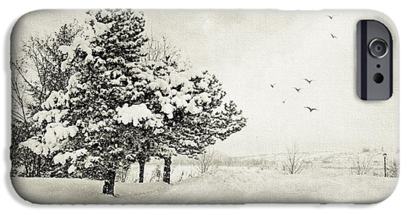 Snowy Day iPhone Cases - Winter White iPhone Case by Julie Palencia