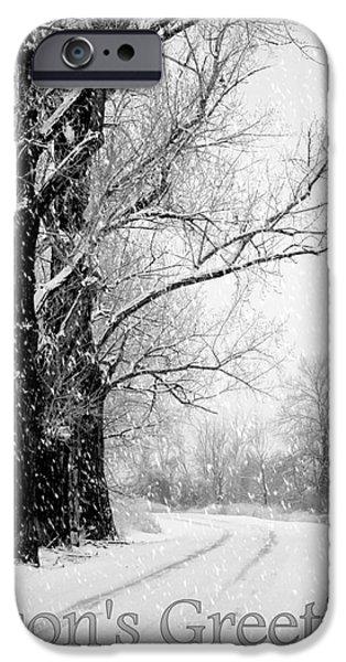 Winter White Season's Greetings iPhone Case by Carol Groenen